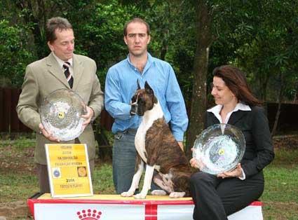 "Gran Champion Chilena y Brasilera y Campeona Panamericana. Boomerang Von Kunsfer, ""Boomy"". Handler Gerson Trani"